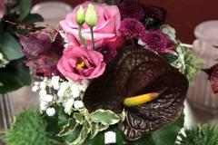 Blumenhaus Eching - Saisonblumen